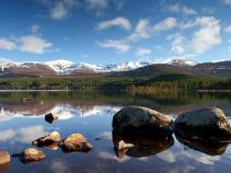 Cairngorms Nationalpark, Schottlandreise