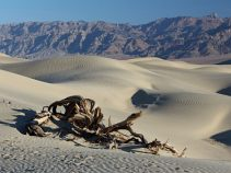 Death Valley, USAreise
