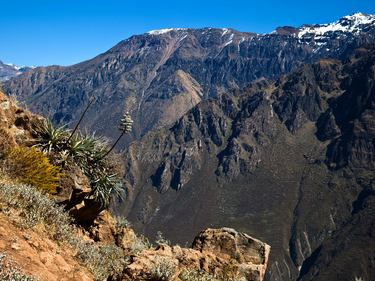 Colca Canyon, Argentinienreise Nr. 520120