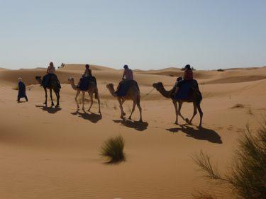 Erlebnisreisen Tunesien
