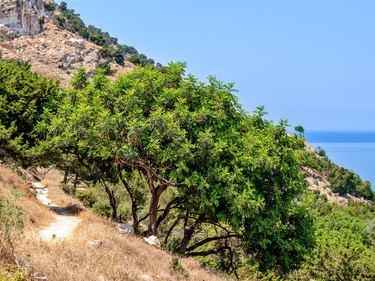 Zypern Wanderreise